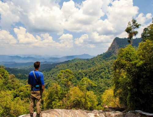 Khao Sok Trekking and Hiking FAQs