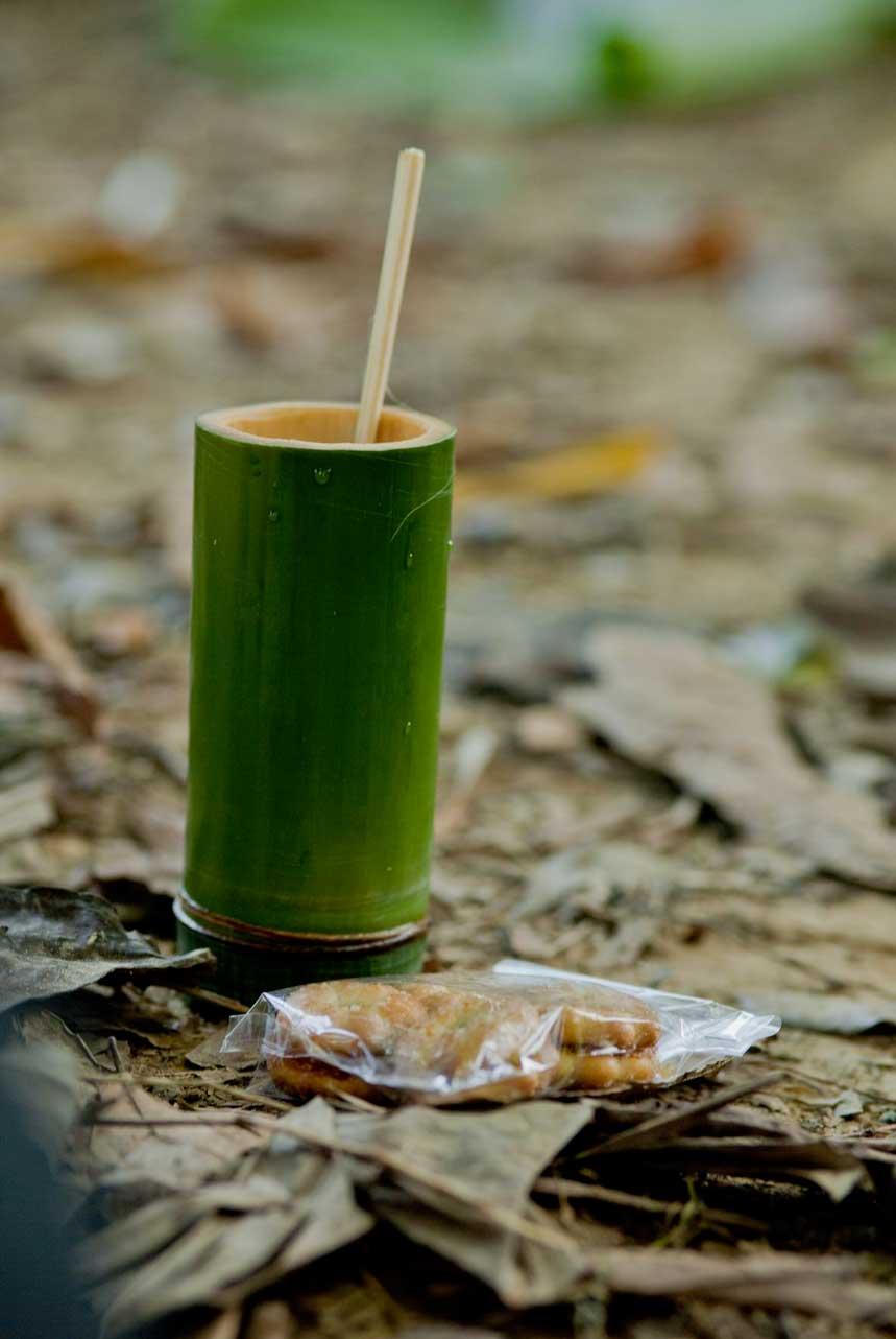 Thailand jungle tea