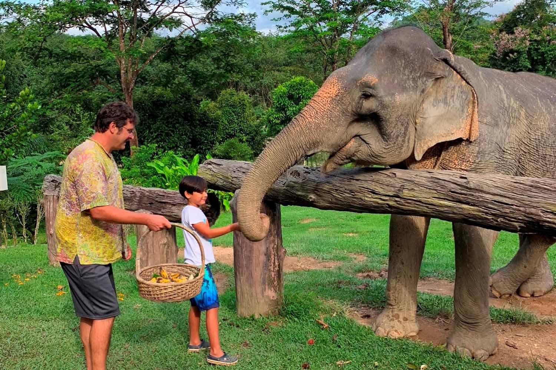 Family friendly Khao Sok elephant experience