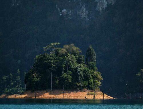 History Of Khao Sok National Park
