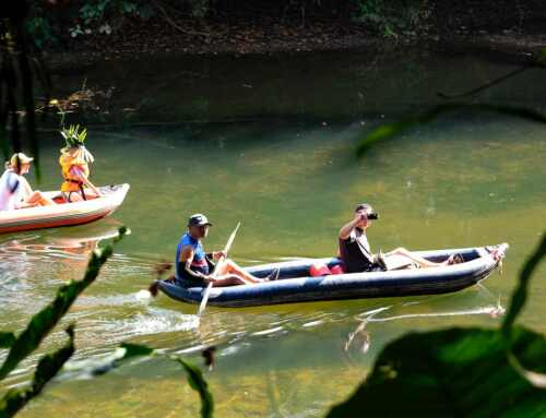 Things to do in Khao Sok Village